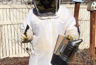 Your Seasonal Beekeeping Calendar