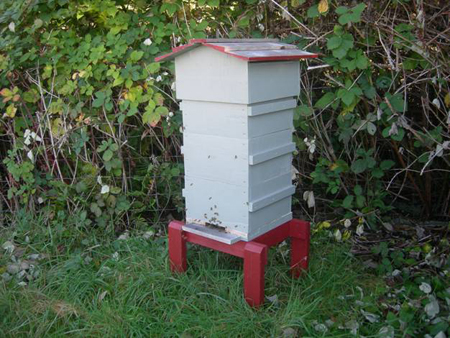 beekeeping-with-the-warre-hive