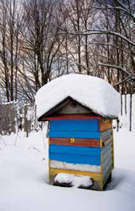 Most beekeeping operations of any size seldom have the time to do much with their beeswax other than to give it a preliminary refinement before shipping it off to a wholesaler.