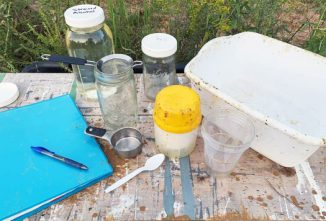 Conduct an Alcohol Wash for Varroa Mite Monitoring