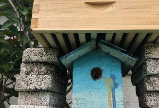 How Do I Get Bees to Move out of a Birdhouse?
