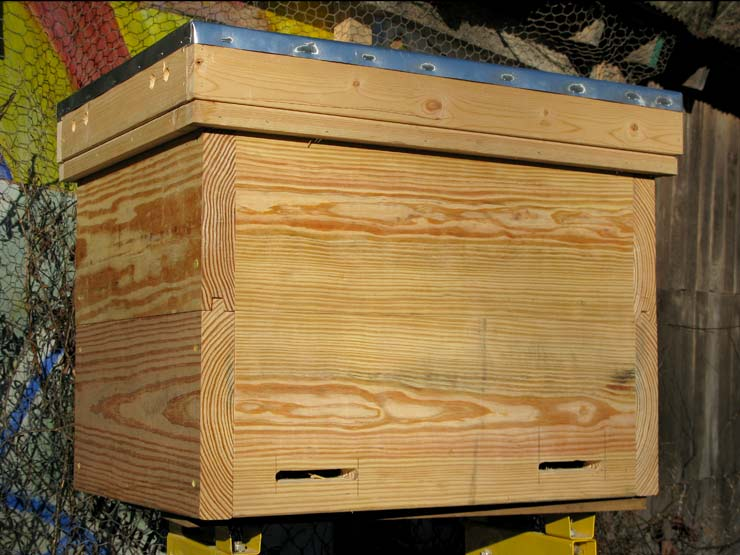 Which is Better for a Layens Hive: Fumigation or Vaporization of Oxalic Acid?
